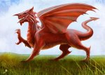 Any excuse to show y Draig Goch, the Welsh dragon!